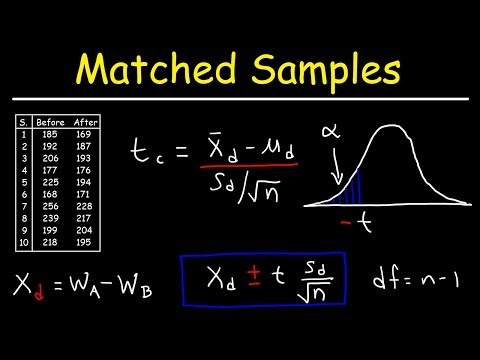 How to do a two sample t test paired two sample for means