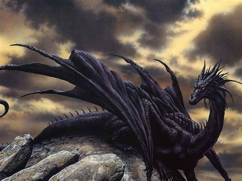 Dragon Wallpaper Free HD Backgrounds Images Pictures