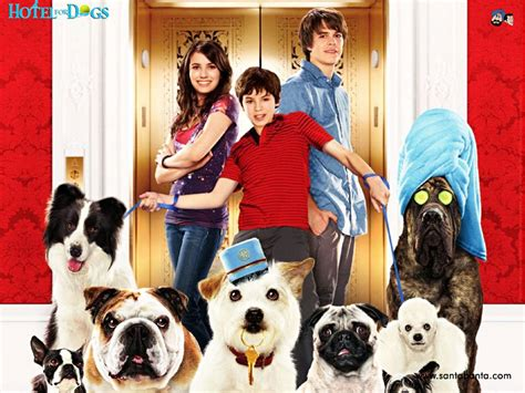 Hotel For Dogs Movie Wallpaper #7